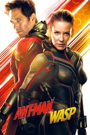 Image Ant-Man and the Wasp
