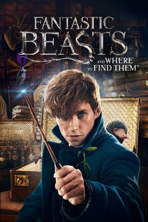 Image Fantastic Beasts and Where to Find Them