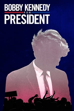 Image Bobby Kennedy for President
