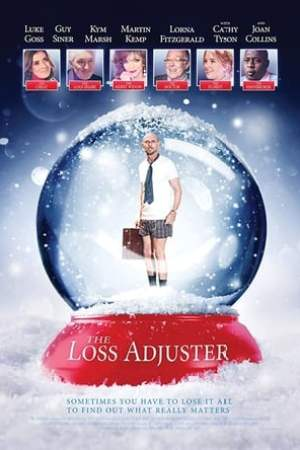 The Loss Adjuster