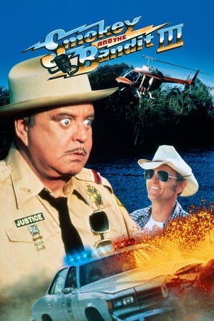 Image Smokey and the Bandit Part 3