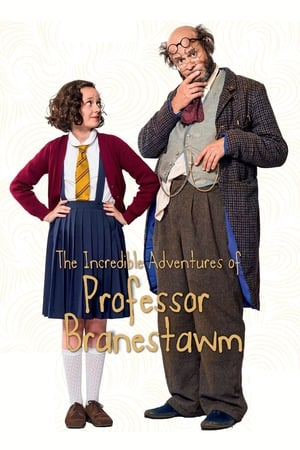 Image The Incredible Adventures Of Professor Branestawm