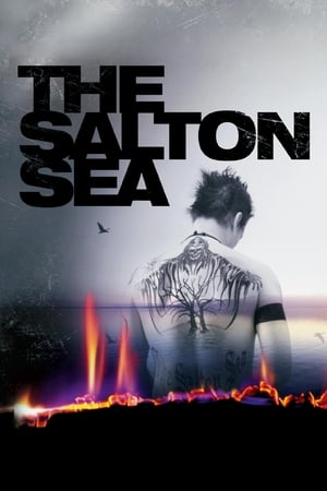 Image The Salton Sea