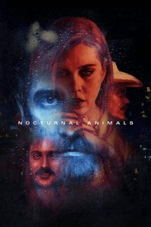 Image Nocturnal Animals
