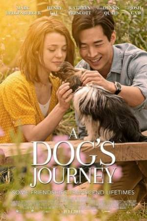 Image A Dog's Journey