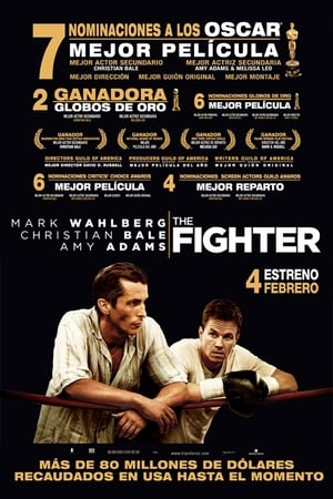 Image The Fighter