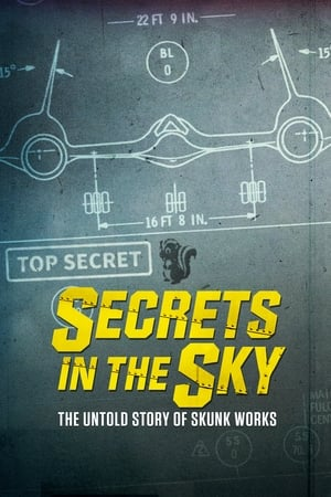 Image Secrets in the Sky: The Untold Story of Skunk Works