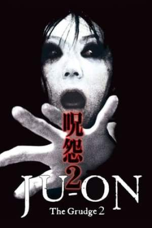 Image Ju-on: The Grudge 2
