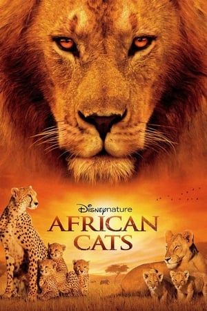 Image African Cats