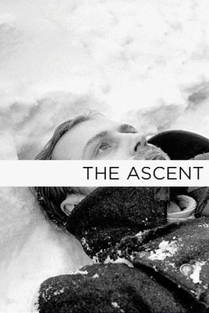 Image The Ascent