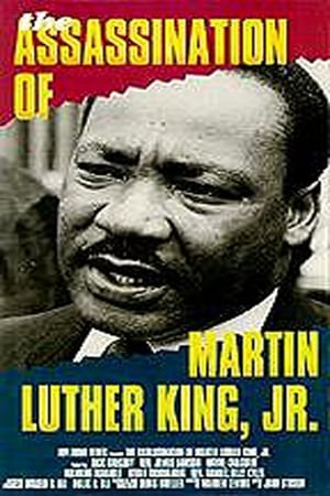 the assasination of martin luther king Findings on mlk assassination a james earl ray fired one shot at dr martin luther king jr, the shot killed dr king  biography of james earl ray.