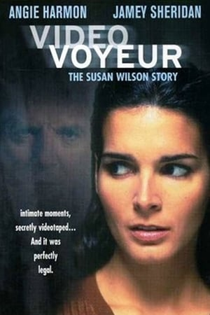 Image Video Voyeur: The Susan Wilson Story