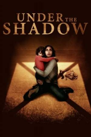 Image Under the Shadow