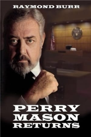 Image Perry Mason Returns