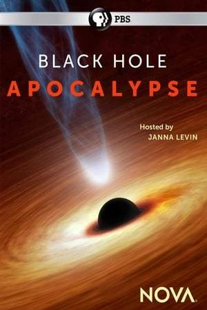 Black Hole Apocalypse