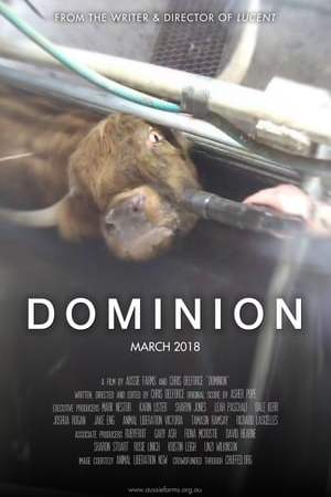 Image Dominion