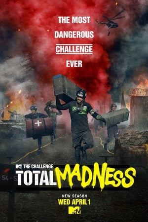 poster The Challenge