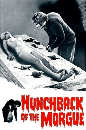 Image Hunchback of the Morgue