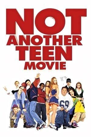 Image Not Another Teen Movie
