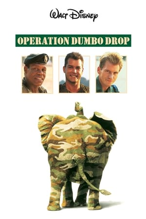 Image Operation Dumbo Drop