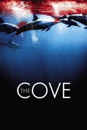 Image The Cove