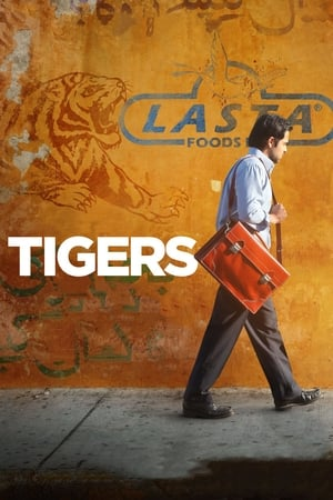 Image Tigers