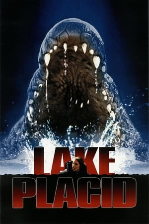 Image Lake Placid