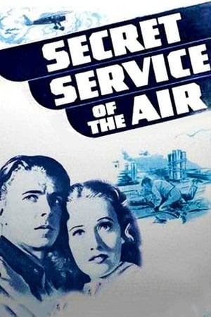 Image Secret Service of the Air