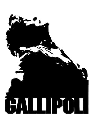 Image Gallipoli