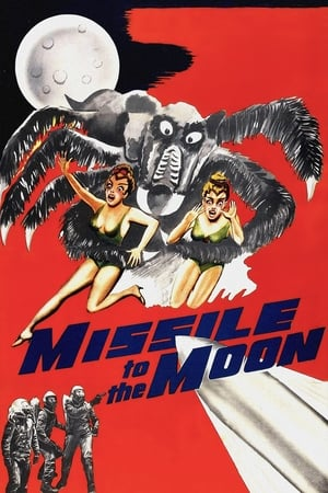 Image Missile to the Moon