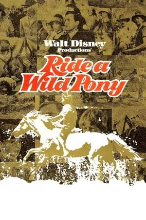 Image Ride a Wild Pony