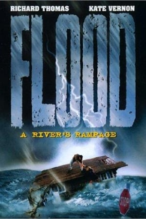 Image Flood: A River's Rampage
