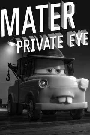 Image Mater Private Eye