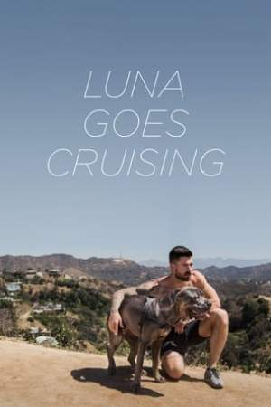 poster Luna Goes Cruising