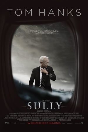 Image Sully