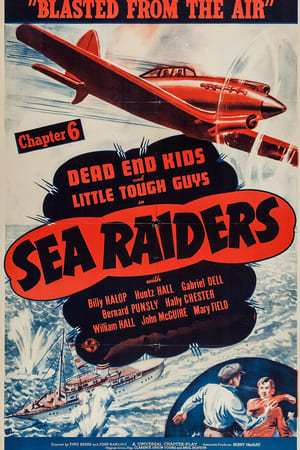 Image Sea Raiders