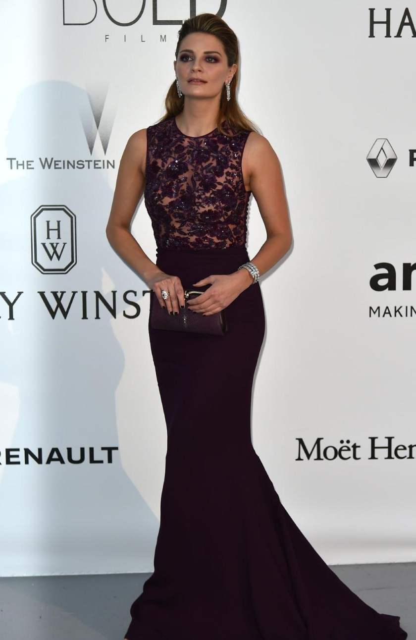 CANNES FILM FESTIVAL COVERAGE amfAR Gala 2016 in Cap D'Antibes France, www.imageamplified.com, Image Amplified (1)