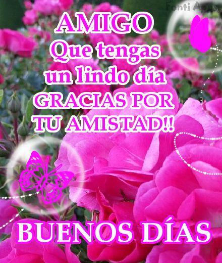 Imagenes de Flores, rosas, con frases  - CORTAS DE AMOR
