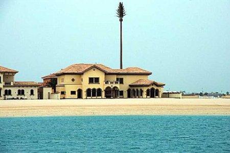 14420 villa for rent the palm jumeirah 20111102044257