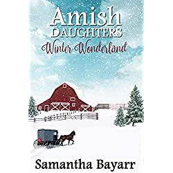 Amish Winter Wonderland