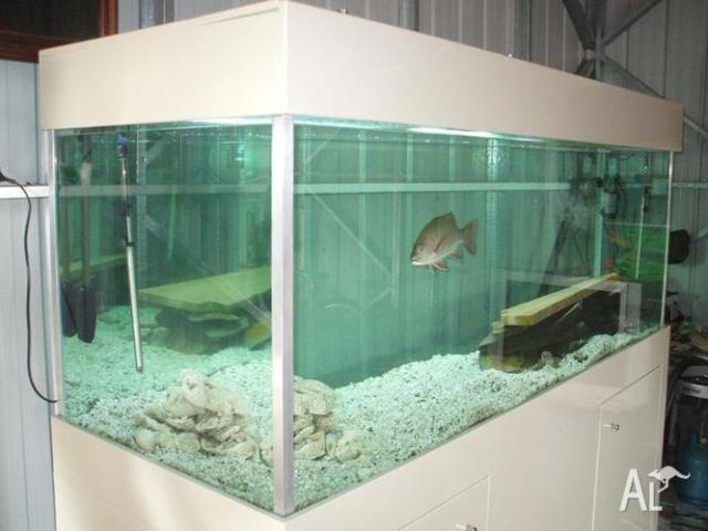 Fishtank 7ft Aquarium for Sale in GLASS HOUSE MOUNTAINS, Queensland
