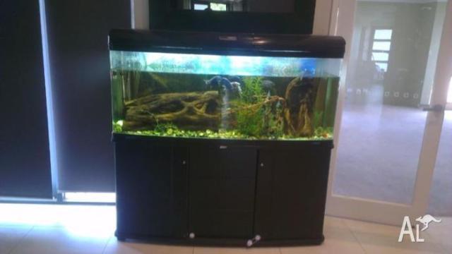 Jebo Aquarium for Sale in ARMADALE, Western Australia Classified