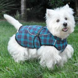 Small Crop Of Dog Coat Pattern