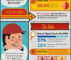 The 5 Types of Sports Gamblers [Infographic]