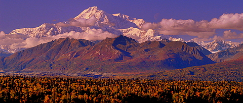 Of course I have to have a Picture of Mt. Mckinley!