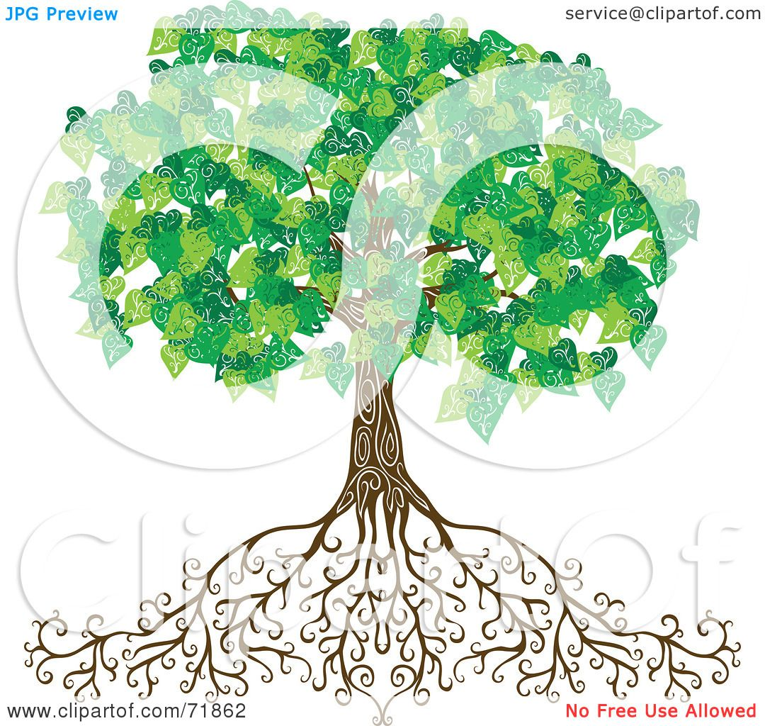 Aweinspiring Deeproots By Inkgraphics Clipart Illustration A Mature Green Tree Tree Deep Roots Dramabeans Clipart Illustration A Mature Green Tree Deep Roots Dramafever Tree houzz 01 Tree With Deep Roots