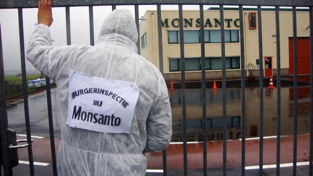 Sede de Monsanto en Enkhuizen (Holanda).