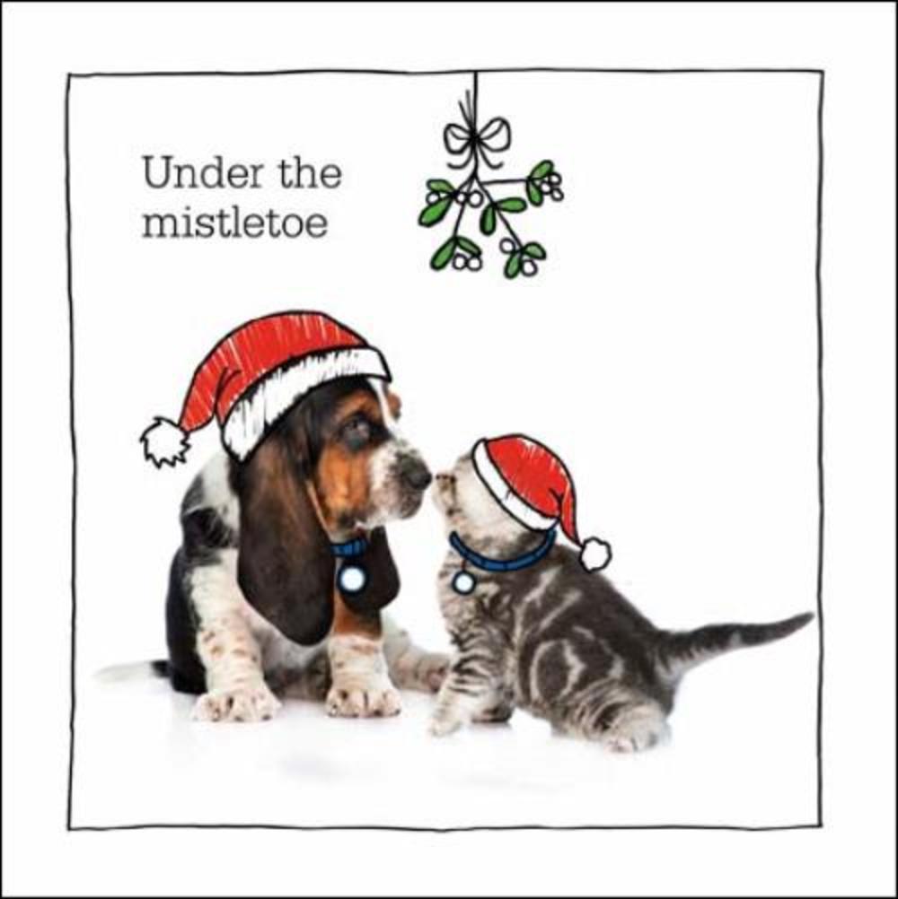Glomorous Under Mistletoe Battersea Cats Dogs Card Under Mistletoe Battersea Cats Dogs Card Cards Dog Cards Personalized Dog Cards Sayings cards Dog Christmas Cards