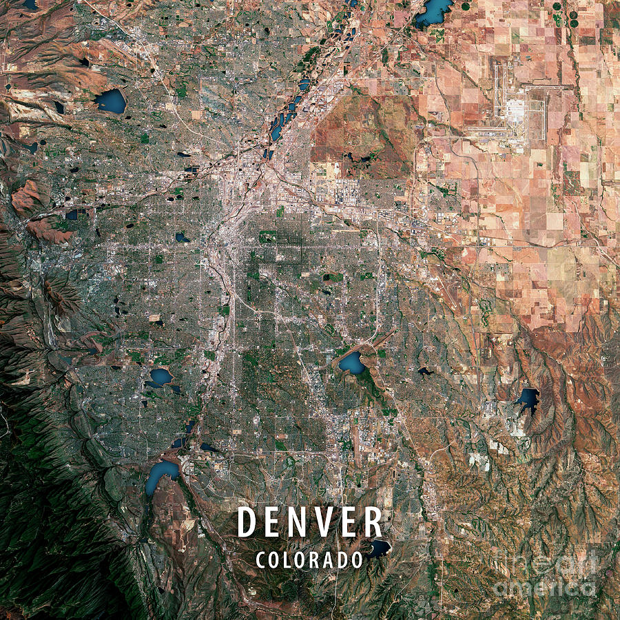 Denver 3d Render Satellite View Topographic Map Digital Art by Frank     Denver Digital Art   Denver 3d Render Satellite View Topographic Map by  Frank Ramspott