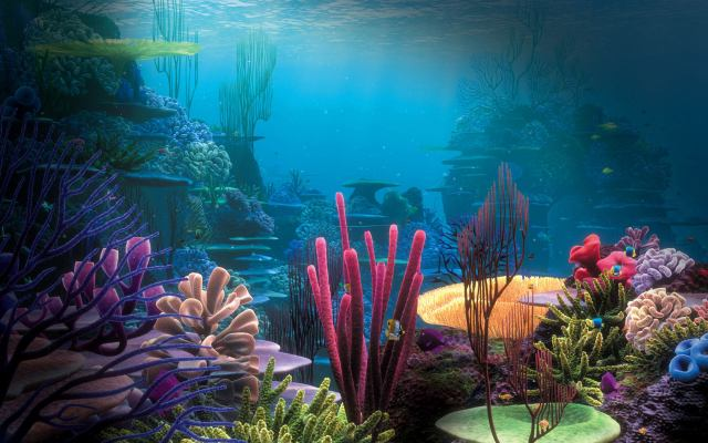 Aquarium Background Free Download
